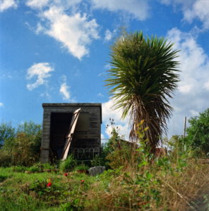 Photo of Collier Road Allotments by Ian Grant