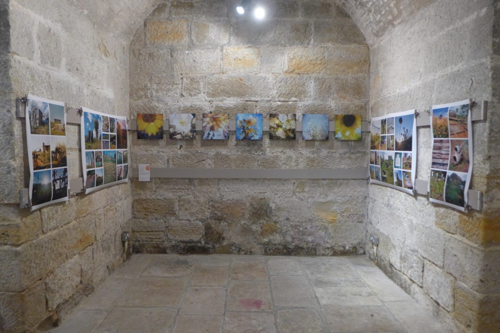 Ian Grant's work in the Octet Exhibition at St Mary in the Castle, Hastings during October 2014